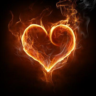 Улун Дахунпао и любовь. Чайная Лавочка