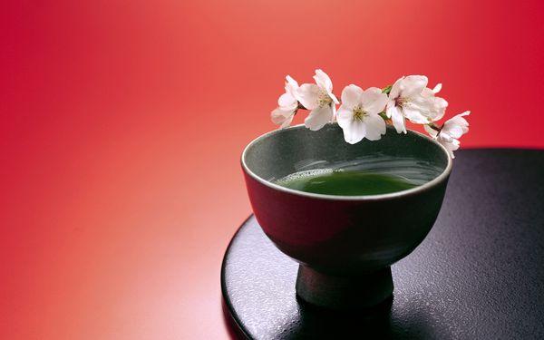 Чай Сенча Саемидори. Чайная Лавочка